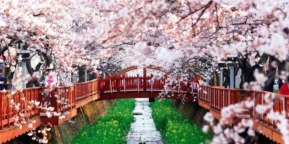 粉色来袭~谁说樱花留不住?这些单品让你美翻整个春季!