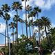 情迷洛杉矶 | 美国游记